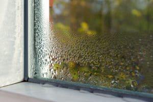 Condensation on Glass Windows